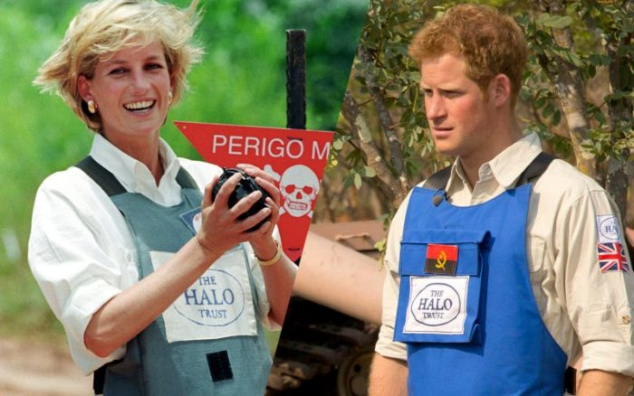 """Prince Harry was quoted as saying; """"I know I've got a lot of my mother in me. I am doing a lot of things that she would probably do."""""""